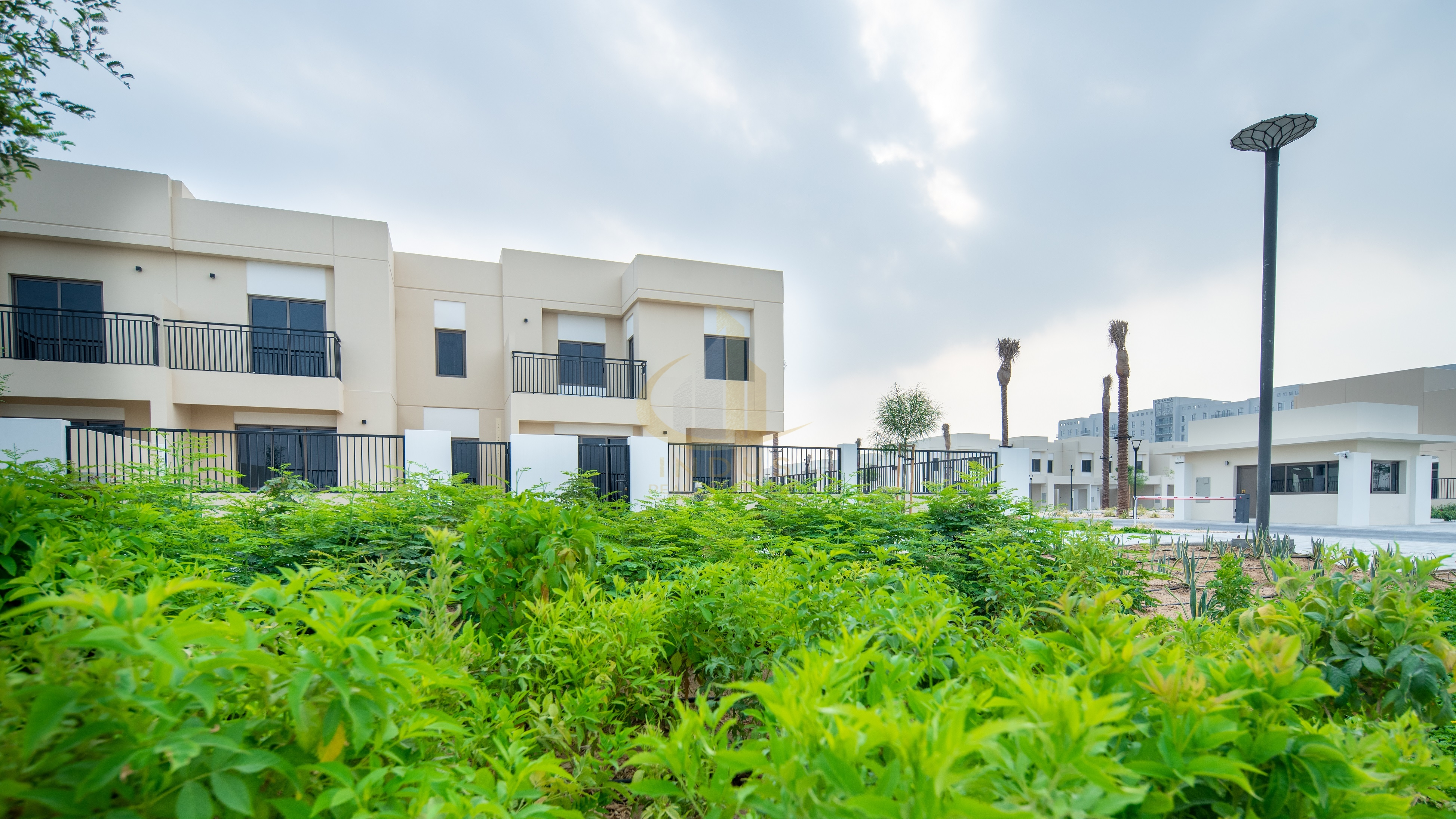Single Row | Type 10 | 3BR+M Safi Townhouse View